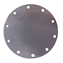 GASKET FOR 3-1/2IN DIAPHRAGM (1069)