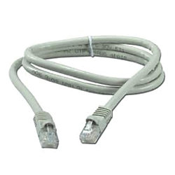 NETWORK CABLE 3FT MS2000