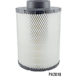 PA2818 - Air Element