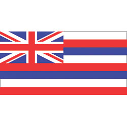 12INX18IN HAWAII FLAG