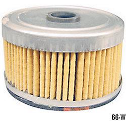 66-W - DAHL Fuel Element