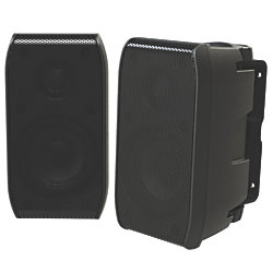 100W 2-Way Full-Range Cabin Speakers