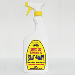 16OZ SPRAY SALT AWAY