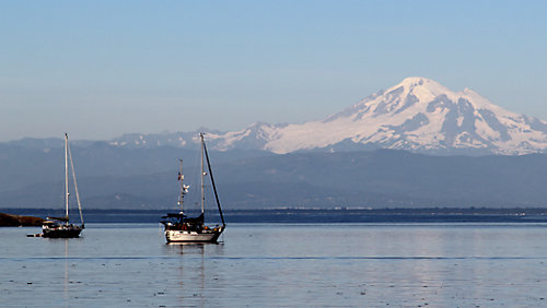 Boats Anchored in Puget Sound with Mount Rainier in the Background